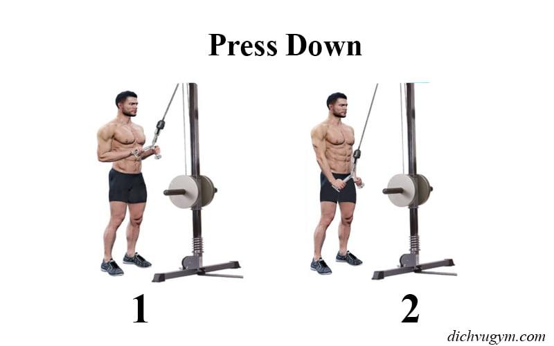 Tập tay sau press down